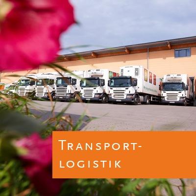 Karriere-Job-Terra-Logistik
