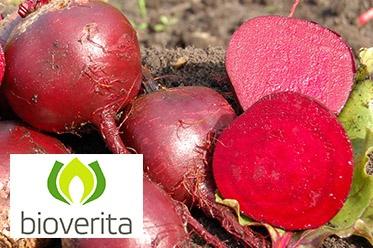 Partnerschaft mit Bioverita